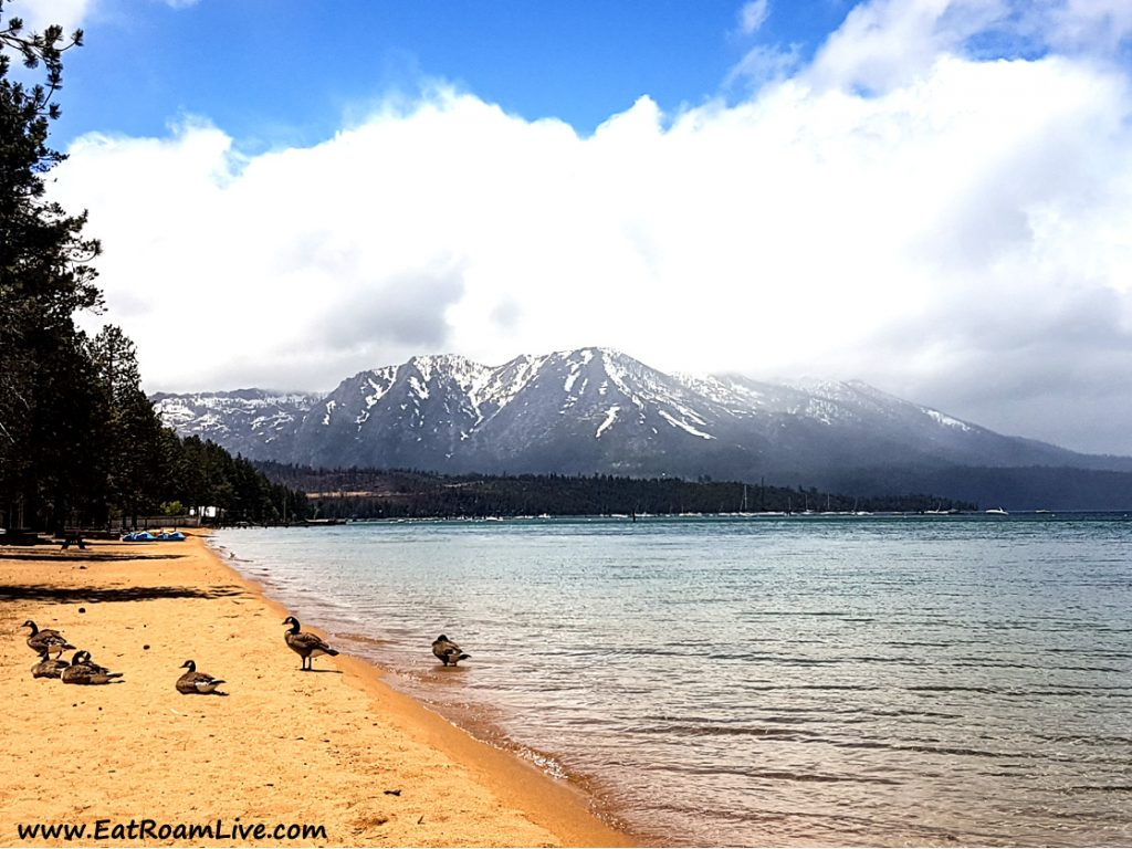 Enjoying the 'summer' chill at Pope Beach, South Lake Tahoe