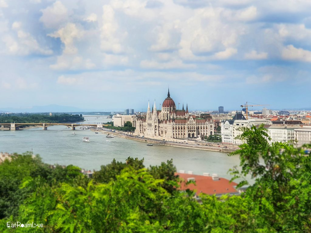 View of Parliament Building from Castle Hill, Budapest with Kids (Itinerary & Things to Do)